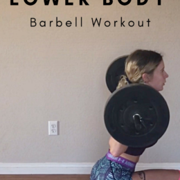 lowr body barbell workout